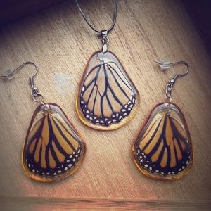 Real Butterly Wing Set